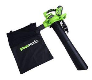 Greenworks Tools Akku-Laubsauger Test