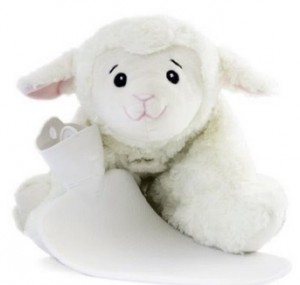 Wärmflaschen Vergleich Schaf Kuscheltier